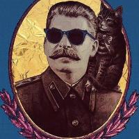 Антон Ивашин